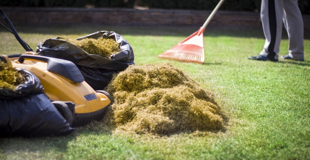 what is the difference between a lawn rake and a lawn scarifier