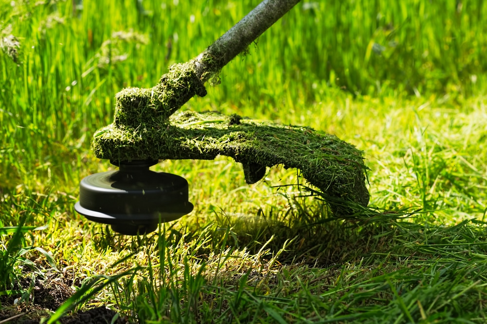 how to use a strimmer